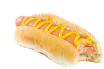 Vegetarian & Vegan Hot Dog